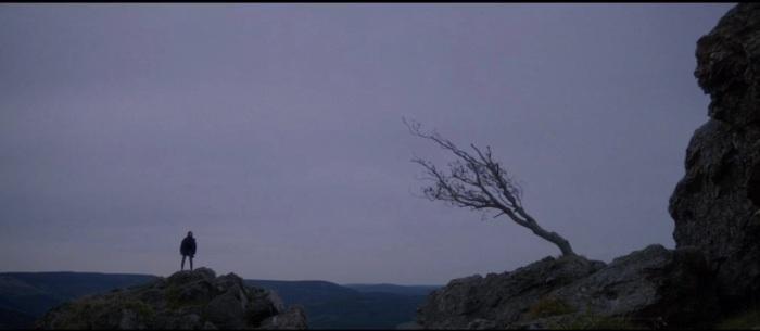 Joe finds her tree of soul