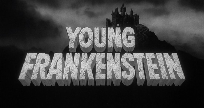 Young Frankenstein 1