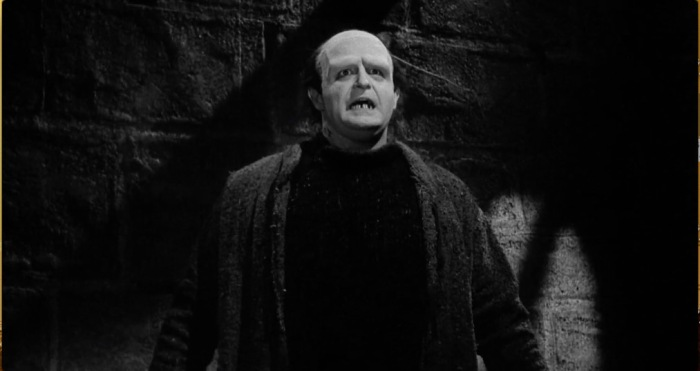 Young Frankenstein 9