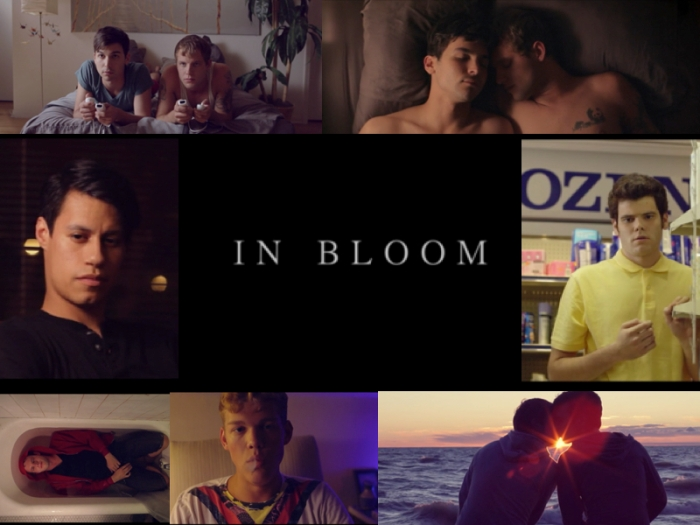 In Bloom 2013
