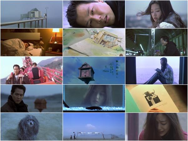 Il Mare 2000