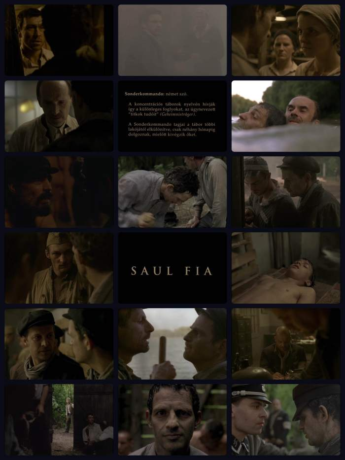 Son of Saul 2015.jpg