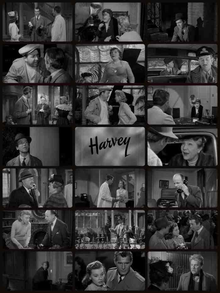 Harvey 1950.jpg