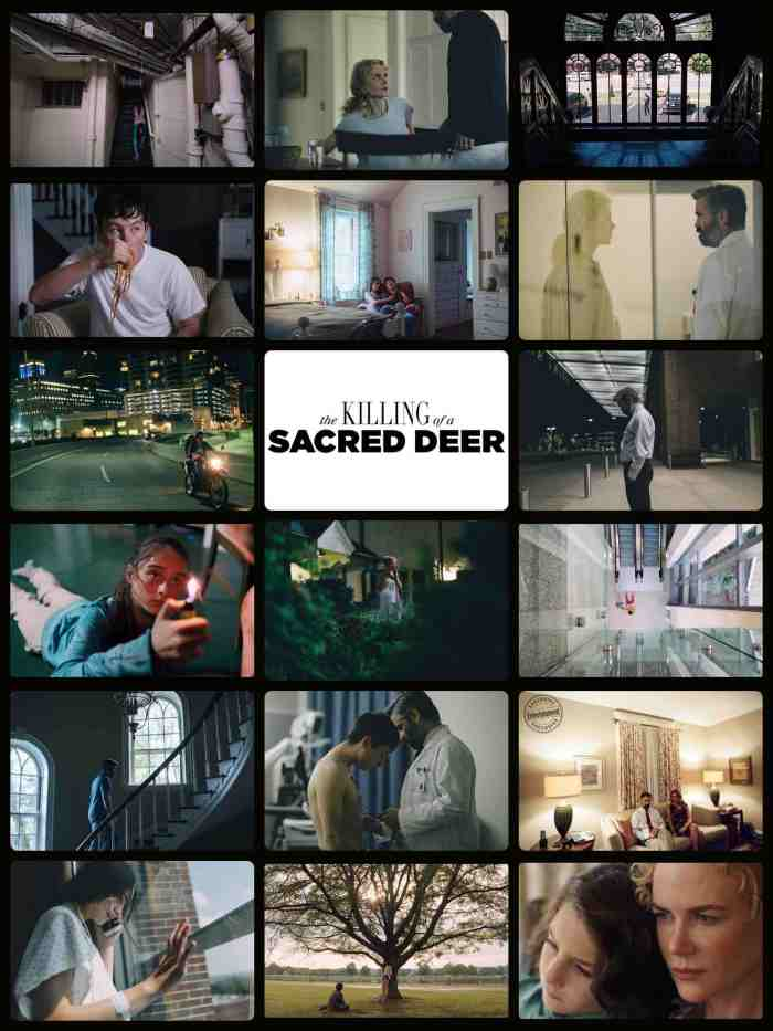 The Killing of a Sacred Deer 2017.jpg