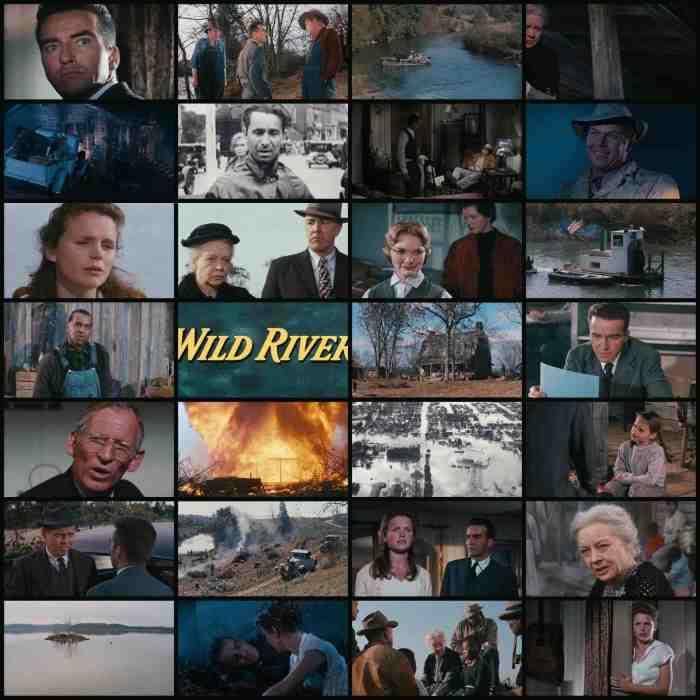 Wild River 1960.jpg